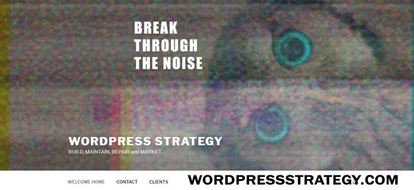 Visit wordpressstrategy.com